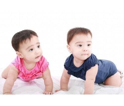 ¿mellizos o gemelos?