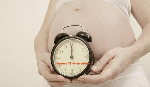¿En qué semana un bebé ya no es prematuro?