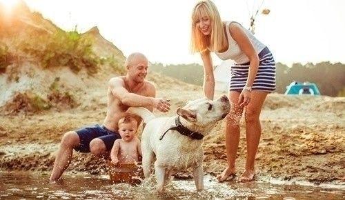 Bebés y cachorros, ¿pueden vivir juntos?