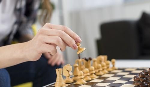 ¿a qué edad se puede aprender ajedrez?