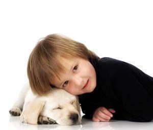 Botiquín para mascotas: ¿qué debe contener?