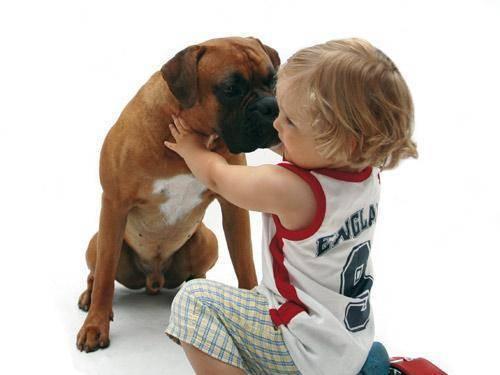 Miedo infantil a los perros