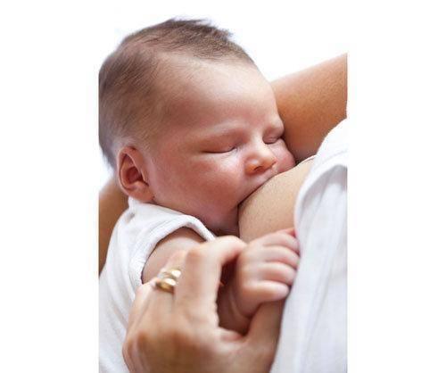 La oms descarta que el virus zika pase a través de la leche materna