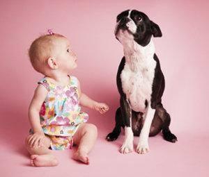La llegada de un bebé a una casa... con mascotas