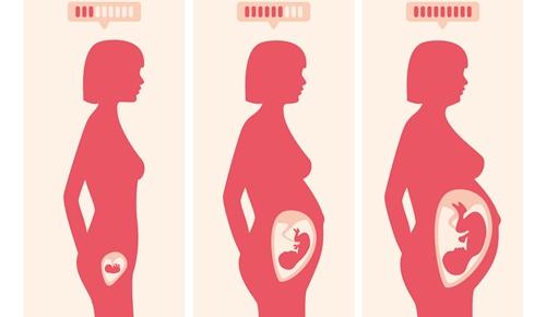 Las 34 semanas de embarazo cuantos meses son