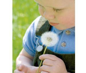 Enfermedades primaverales: alergia, conjuntivitis, varicela, asma