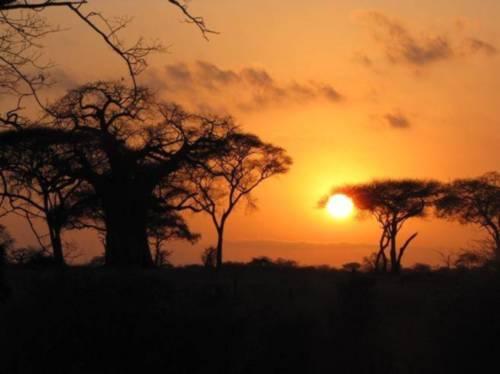 Viajar a tanzania con niños