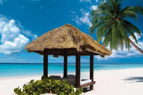 ¡nos vamos al caribe! viaja a república dominicana con tus hijos