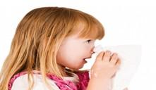 ¿Qué se debe hacer cuando sangra la nariz?