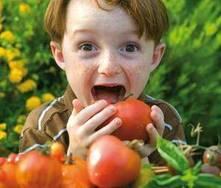 Alimentos para mejorar las alergias primaverales