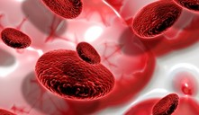 Congelar células madre