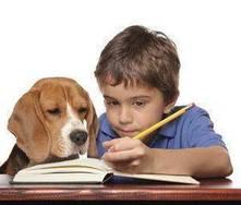 Cómo establecer rutinas en la vida diaria de los niños