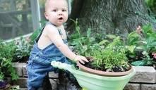 ¿Cuándo surge la conciencia en los bebés humanos?