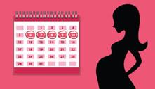 ¿Cuándo debería llegar el periodo después de la cuarentena?