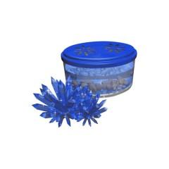 Cultivo de cristales azul de Miniland